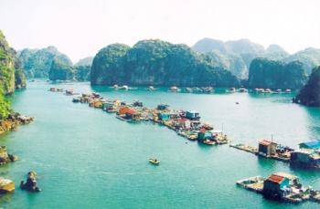 Bảo vệ môi trường vịnh ở Cát Bà