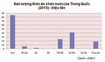 Trung Quốc: Thống lĩnh thị trường thức ăn thủy sản châu Á