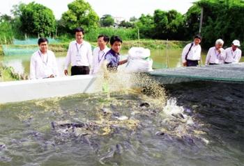 Quảng Ninh: Nâng cao năng lực quản lý giống thủy sản