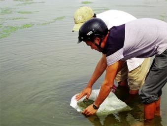 Quảng Trị: Thiếu giống, xen canh thủy sản gặp khó
