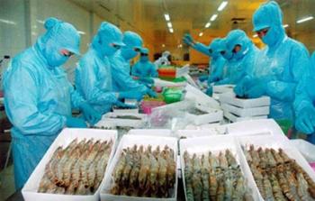 Agribank lo mất tiền tỷ ở dự án thủy sản
