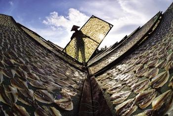 Khô cá chỉ vàng