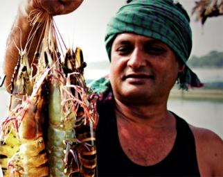 Nuôi tôm khỏe ở Bangladesh