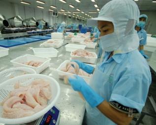 Tăng cường kiểm soát chất lượng cá tra xuất khẩu vào Mỹ