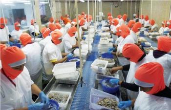 Rủi ro từ buôn lậu tôm sang Trung Quốc