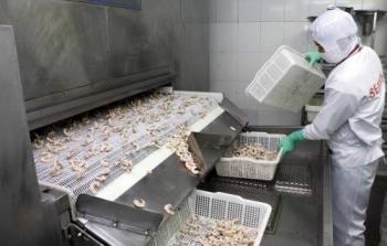 Hoa Kỳ dỡ bỏ một phần thuế chống bán phá giá với tôm Việt Nam