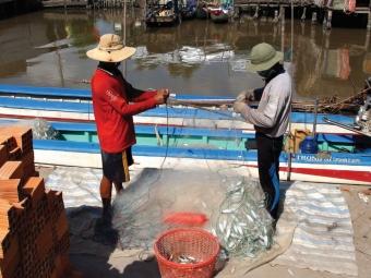 Ngư dân cần giải pháp chuyển đổi ngành nghề