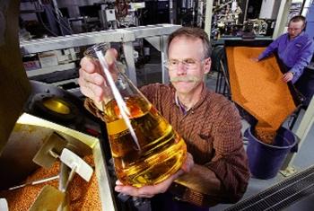 Nguyên liệu thay thế bột cá, dầu cá