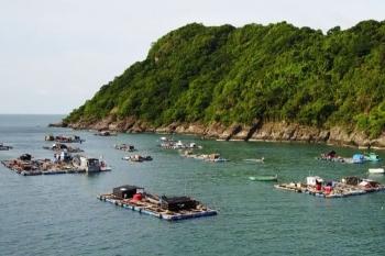 Cà Mau: Sông Đốc được công nhận thị trấn đảo