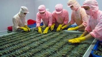Yếu tố nào giúp thúc đẩy tăng trưởng xuất khẩu tôm năm qua?