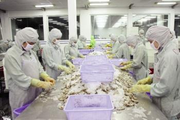 Thách thức thủy sản Việt Nam tại Mỹ