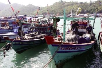 Kiên Giang: Khai thác thủy sản bền vững