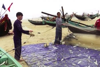 Ngư dân Quảng Bình trúng lộc biển