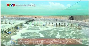 Chương trình Nâng tầm tôm Việt số 9