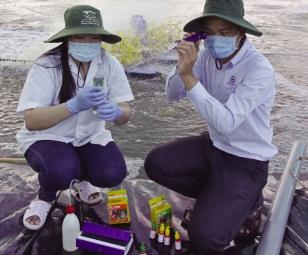 Quan trắc môi trường: Vai trò thiết yếu
