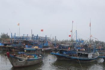 Quảng Ngãi: Tăng cường kiểm soát tàu khai thác hải sản