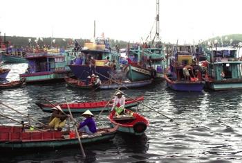 Kiên Giang: Thúc đẩy phát triển nghề cá bền vững