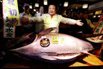 Đẳng cấp cá ngừ Nhật Bản