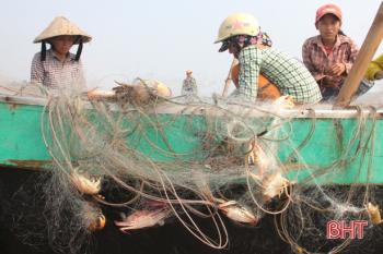 """Ngư dân Xuân Yên """"kiếm"""" tiền triệu mỗi ngày từ khai thác ghẹ"""