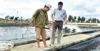 Giao Thủy phát triển kinh tế biển