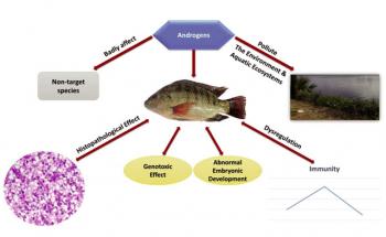 Hormone trong sản xuất cá giống