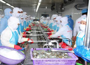 TP.HCM, ĐBSCL 'đỏ mắt' tìm công nhân chế biến thủy sản