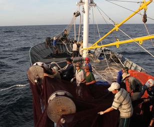 Tiền Giang: Mục tiêu mới cho khai thác thủy sản