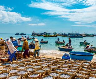 Giải tỏa khó khăn trong hậu cần nghề cá