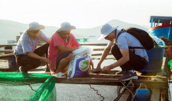 Cùng anh Ba Chuẩn bàn chuyện thức ăn chuẩn cho cá biển