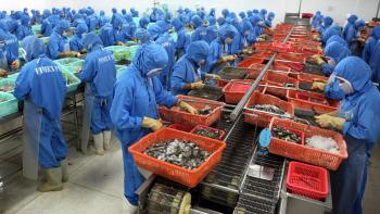Trung Quốc cấm 15 doanh nghiệp thủy sản Việt Nam