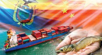 Ecuador: Giữ vững thị trường tôm Trung Quốc