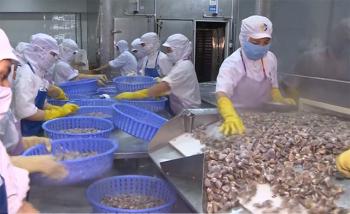 Thêm 3 loại thủy sản Việt Nam được xuất khẩu vào Trung Quốc