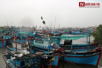 Ninh Thuận: Cấm tàu thuyền hoạt động trên biển, đề phòng bão số 5 đổ bộ