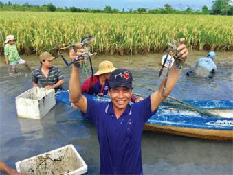Tôm sinh thái Cà Mau: Giải pháp thích ứng biến đổi khí hậu