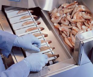Ngành tôm nuôi sẽ bị ảnh hưởng nặng nhất bởi COVID-19