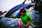"""""""Thủ phủ"""" cá ngừ của Philippines"""