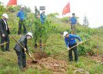 Thanh niên thủy sản góp sức bảo vệ môi trường