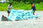 HTX Thủy sản Thới An: Chung sức chung lòng