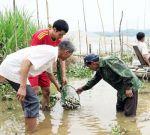Phú Thọ: Tái tạo và phát triển nguồn lợi thủy sản