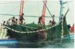 Thành lập doanh nghiệp đánh bắt xa bờ: Đã đến lúc phải thực hiện