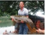 Hải Dương: Câu được nhiều cá trắm đen to tại hồ Côn Sơn