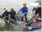 Tôm - Điểm tựa thủy sản Việt
