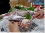 Ẩm thực độc đáo ở cảng biển Kure
