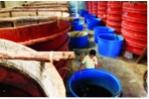 Nước mắm Phú Quốc: Nhọc nhằn giữ thương hiệu
