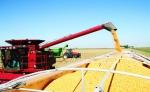Hiện đại như nông nghiệp Mỹ