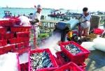 Nỗi lo hậu cần nghề cá miền Trung