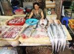 """Bất an thủy sản Trung Quốc """"ngập"""" chợ Hà Nội"""