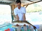 Khánh Hòa: Cá hồng Mỹ - đối tượng nuôi mới