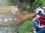 Tây Sơn (Bình Định): Tổng kết mô hình nuôi quảng canh cải tiến cá nước ngọt
