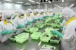 Điều kiện xuất khẩu tôm vào Australia